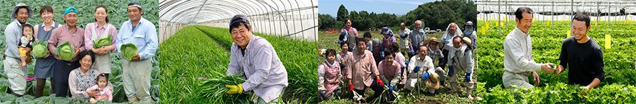 野菜は生産農家と直接契約したもの。