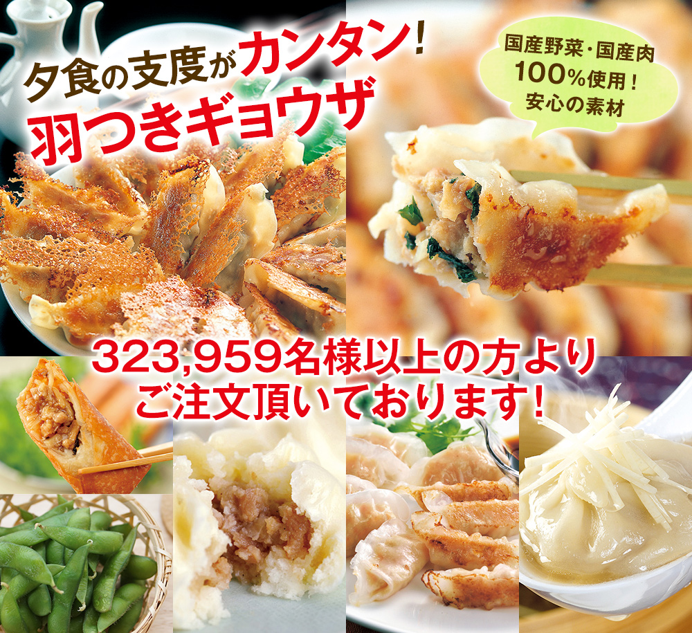 夕食の支度がカンタン!羽つきギョウザ 国産野菜・国産肉100%使用!安心の素材